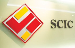Phê duyệt phương án sắp xếp, phân loại doanh nghiệp của SCIC