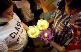 TP.HCM: Hàng nghìn người thả hoa đăng mừng lễ Phật đản