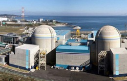 Hàn Quốc quyết định tiếp tục xây lò phản ứng hạt nhân