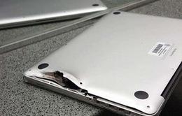 Mỹ: Sống sót sau vụ xả súng tại sân bay nhờ ba lô máy tính xách tay