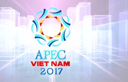 APEC - Sự kiện đối ngoại quan trọng nhất năm 2017 của Việt Nam