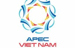 Vị thế mới của Việt Nam với APEC 2017