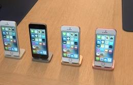 """Apple tiếp tục bị Australia kiện với cáo buộc biến iPhone thành """"cục gạch"""""""