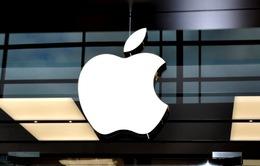 Apple sẽ bắt đầu sản xuất iPhone tại Ấn Độ trong năm nay