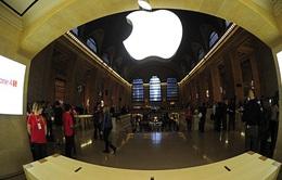 """Apple cấm sử dụng logo """"Quả táo"""" tại cửa hàng iPhone xách tay ở Việt Nam"""