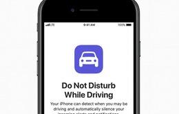 Ứng dụng trên iPhone giảm tai nạn giao thông
