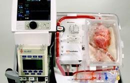 Trung Quốc: Hãng hàng không giúp vận chuyển tim hiến tặng để kịp cấy ghép