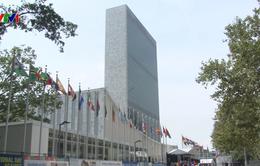 Liên Hợp Quốc thông qua Nghị quyết kỷ niệm 50 năm thành lập ASEAN