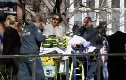 Australia: Sinh viên tấn công giảng viên và bạn học, 4 người bị thương
