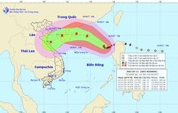 Bão số 11 cách quần đảo Hoàng Sa khoảng 600km