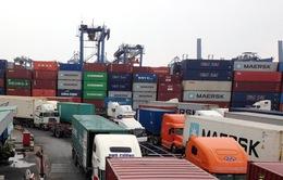 Có thể đấu giá hàng hóa lưu giữ ở các cảng biển để trừ nợ