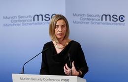 EU ủng hộ giải pháp hai nhà nước Israel - Palestine