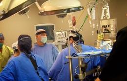 Những bác sĩ dũng cảm trong 2 trận động đất tại Mexico