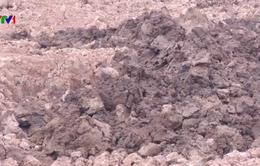 Sự thật việc đào đất lúa bán cho lò gạch ở Hưng Yên