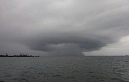 New Zealand khẩn trương đối phó với cơn bão mạnh nhất trong vòng gần 50 năm