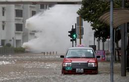 Hong Kong, Macau (Trung Quốc) thiệt hại 1 tỷ USD do bão Hato