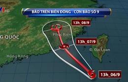 Bão số 9 gây gió giật cấp 10 ở Biển Đông