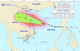 Trưa chiều 15/9, bão số 10 đi vào đất liền các tỉnh từ Nghệ An đến Quảng Trị