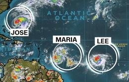Bão Maria hướng về biển Caribe