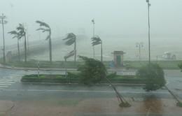 Sẽ còn 1-2 cơn bão, áp thấp nhiệt đới ảnh hưởng Trung Bộ, Nam Bộ