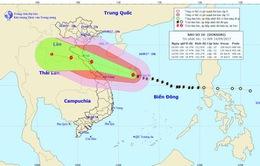 Tâm bão số 10 cách bờ biển các tỉnh từ Hà Tĩnh đến Quảng Bình khoảng 600km