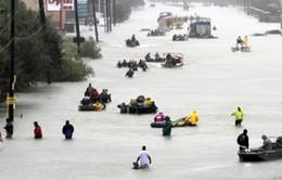 Thiệt hại do thảm họa trên toàn cầu tăng hơn 60% trong năm 2017