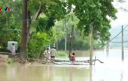 Người dân trắng tay vì mưa lũ kéo dài ở Phú Yên