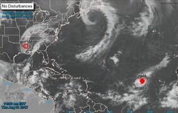 Bão Harvey vừa đi qua, Mỹ lại sắp đón siêu bão mới