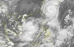 Nhiều khả năng bão số 10 đổ bộ vào Thanh Hóa - Quảng Trị