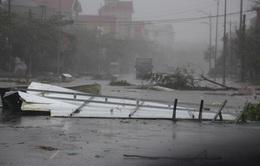 Sự vào cuộc quyết liệt của các cấp chính quyền giúp giảm thiệt hại do bão số 10