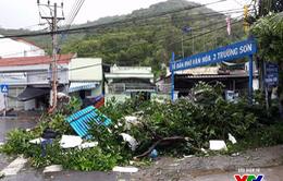 Người dân thiếu thông tin trong ứng phó với bão
