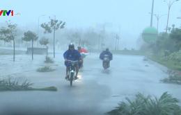Đường phố Tuy Hòa (Phú Yên) tan hoang sau bão số 12