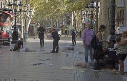 Tây Ban Nha bắt giữ 2 nghi phạm sau vụ đâm xe