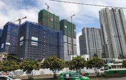 TP.HCM: Tín dụng trong lĩnh vực bất động sản có xu hướng giảm