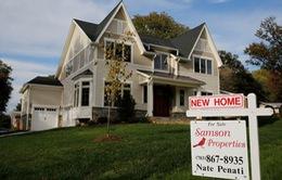 Người dân Mỹ đổ xô đi nộp thuế bất động sản
