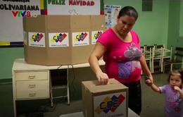 Kết quả sơ bộ bầu cử địa phương tại Venezuela: Đảng PSUV cầm quyền thắng lớn