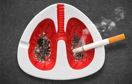 96,8% các ca ung thư phổi có liên quan đến thuốc lá