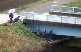 Tìm thấy thi thể bé gái người Việt bị mất tích tại Nhật Bản