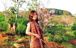Vụ bẻ hoa ở Đà Lạt: Yêu cầu Phó Giám đốc Sở Tư pháp xin lỗi công khai