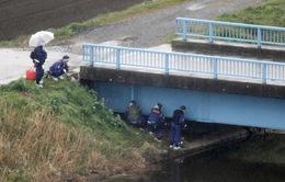 Dư luận Nhật Bản phẫn nộ vì bé gái người Việt bị sát hại