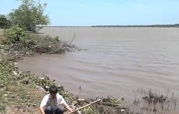Bến Tre: Hàng chục cây số đê bao bị sạt lở do khai thác cát
