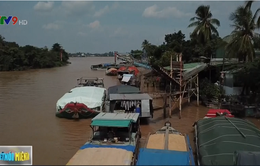 Hàng trăm bến thủy nội địa hoạt động không phép tại ĐBSCL