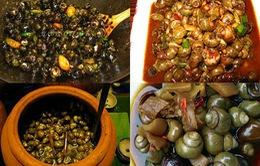 Ốc gạo Phú Đa - Đặc sản bình dị từ thiên nhiên