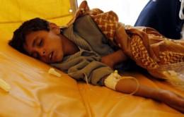 Hơn 200.000 trường hợp mắc bệnh tả tại Yemen