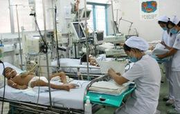 TP.HCM: 44% bệnh nhân sốt xuất huyết đến từ các tỉnh thành khác