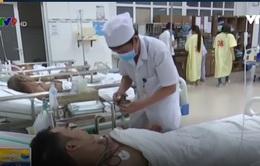 Cứu sống bệnh nhân ngộ độc do ăn phải ốc có độc tố mạnh