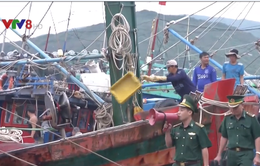 Bình Định: Dừng các cuộc họp để đối phó với bão số 12