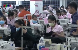 Quảng Nam: Khó khởi kiện các doanh nghiệp nợ đọng bảo hiểm
