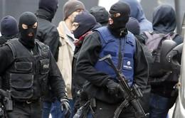 Bỉ bắt giữ một nghi can khủng bố