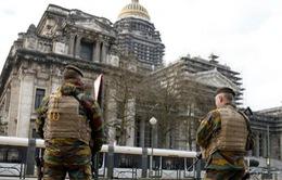"""Kinh tế Bỉ vẫn """"vững tay chèo"""" sau các vụ khủng bố năm 2016"""